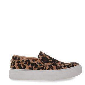 Leopard GILLS-A